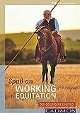 Spaß an Working Equitation: Der gelungene Einstieg