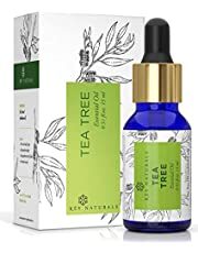 Rey Naturals Tea Tree Essential Oil for Aromatherapy - Tea Tree Essential Oil for Healthy Skin, Face, and Hair - 100% Organic Remedy for Dandruff, Acne, Stress, and More - 15ml