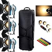 HWAMART® 3 × Lighting 1000W Fresnel luce tungsteno Spot lampadina + Video + Barndoor box + bag volano