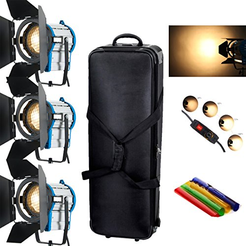 Best HWAMART® 3×1000W Lighting Fresnel Tungsten Spot light Video Bulb+Barndoor+fly case+bag Special