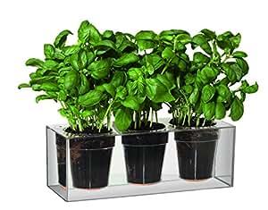 Boskke Cube jardinière 3 pots Transparent Small