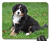 Gaming-Mauspads, Mäusematte, Berner Sennenhund Hund Big Dog Animal Green 3