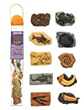 Safari 684804 Ancient Fossils
