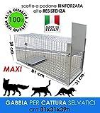 MEDICALMONO GABBIA TRAPPOLA MAXI 81 CM PROFESSIONALE RINFORZATA E ZINCATA DI ALTA QUALITA' PER LA CATTURA DI ANIMALI MEDI: GATTO, VOLPE, NUTRIA, MARMOTTA. CM 81 X 31 X39 H FABBRICATA IN ITALIA NO CINA