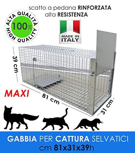 MEDICALMONO GABBIA TRAPPOLA MAXI 81 CM PROFESSIONALE RINFORZATA E ZINCATA DI ALTA QUALITA\' PER LA CATTURA DI ANIMALI MEDI: GATTO, VOLPE, NUTRIA, MARMOTTA. CM 81 X 31 X39 H FABBRICATA IN ITALIA NO CINA