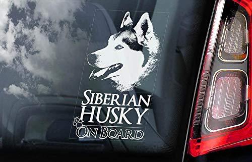 CELYCASY V01 Aufkleber für Autofenster, Motiv Sibirischer Husky on Board
