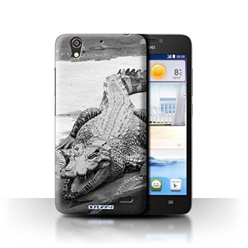 Stuff4® Hülle/Hülle für Huawei Ascend G630 / Krokkodil/Alligator Muster/Zoo-Tiere Kollektion
