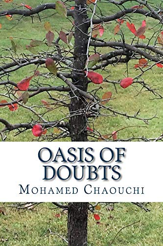 Oasis of Doubts (English Edition)