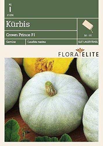 Flora Elite 21236 Kürbis Crown Prince F1-Hybride (Kürbissamen) [MHD 06/2018]