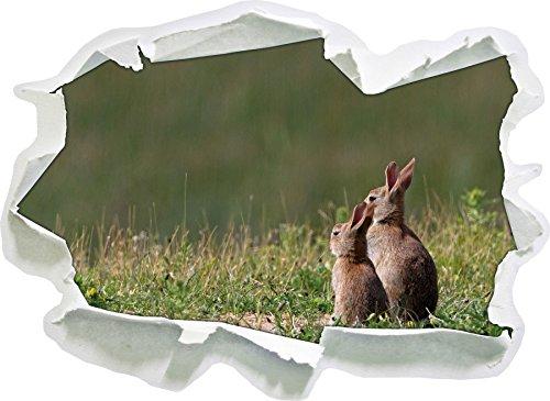 deux-lapin-sur-le-ressort-pre-papier-3d-sticker-mural-taille-62x45-cm-decoration-murale-3d-stickers-