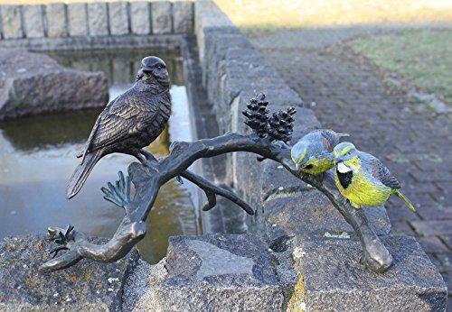 3 Vögel auf Ast sitzend