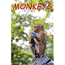 Photo book MONKEYS on the KHAO RANG, Phuket: Photo book showing monkey photos Naughty and cute Impress tourists of Phuket. (Unseen Animals 1) (English Edition)