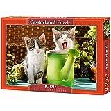Castorland - Puzzle 1000 pièces - Petits gardiens