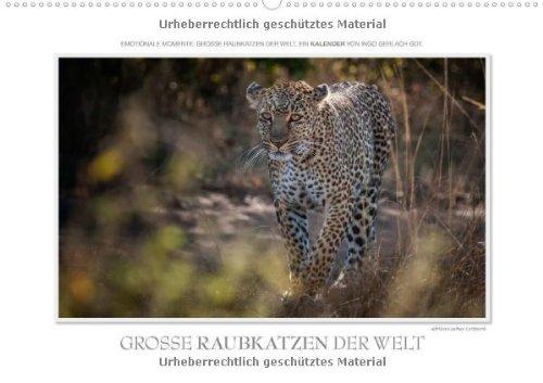 Emotionale Momente: Große Raubkatzen der Welt. (Wandkalender 2014 DIN A2 quer): Ob Tiger, Leopard oder Löwe - die große Raubkatzen der Welt sind ... ausgesucht. (Monatskalender, 14 Seiten)