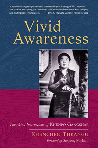 Vivid Awareness: The Mind Instructions of Khenpo Gangshar por Thrangu, Rinpoche Khenchen