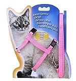 Leetop Pet Kleine Katze Kätzchen Katzengeschirr mit Nylon Leine 120cm