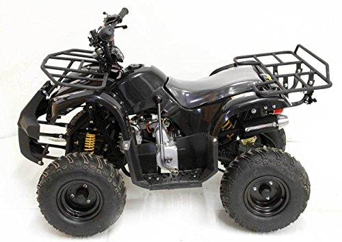 Quad-ATV-7-Lobster_1