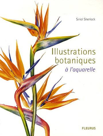 Illustrations botaniques : A l'aquarelle