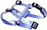 Hamilton Hundegeschirr, Nylon, verstellbar, komfortabel, Small, 5/8