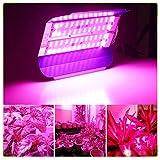 ZWD LED pianta Crescere Luce Pieno Spettro Impermeabile 50W 100W LED Crescente Lampada Phyto per Verdure fioritura Hydroponics Sistema per pianta da Interno fioritura Lampada di Crescita,50W