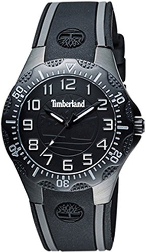 TIMBERLAND DIXIVILLE S Women's watches 14323MSB-02