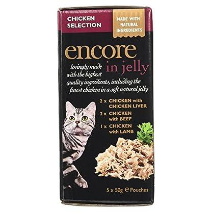 Encore Cat Pouch 7