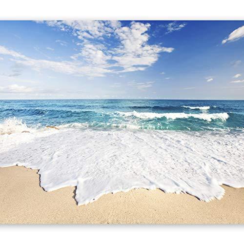 murando Papier peint intissé 350x256 cm Décoration Murale XXL Poster Tableaux Muraux Tapisserie Photo Trompe l'oeil plage mer nature c-B-0035-a-a