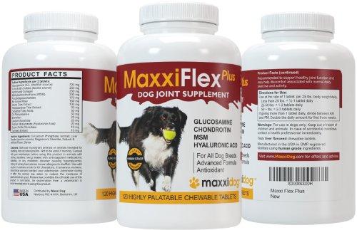 Gelenk-Ergänzungsfutter für Hunde – MaxxiFlex Plus – Hunde Gelenke – Fortschrittliche Formel – Glucosamin HCL, Chondroitin-Sulfat, MSM, Hyaluronsäure, Teufelskralle, Bromelain, Gelbwurz – Linderung Von Arthritisschmerzen – Beste Hüftunterstützung Für Hunde – Hunde-Hüftdysplasie – Alle Rassen Und Größen – 120 Hochwertige Kaubare Tabletten – Geschmacksgarantie - 2