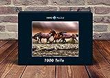 VERO PUZZLE 47153 Natur - Pferde im Wasser, 1000 Teile in hochwertiger, cellophanierter Puzzle-Schachtel