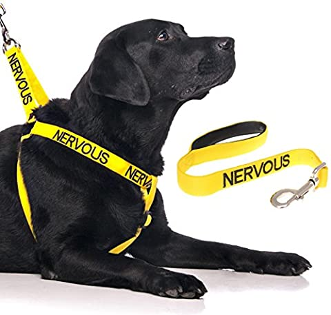 NERVOUS (Give Me Space) Yellow Colour Coded Non-Pull Dog Harness
