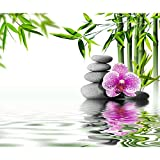 decomonkey | Papier peint intissé Orchidée 400x280 cm | Trompe l oeil Déco Mural Tableaux Muraux Photo Fleur Nature Spa