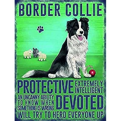 Border Collie cane Targa in metallo da appendere piccola decorazione da parete protettiva, Devoted, cercherà Mandria tutti a... - Border Collie Lovers