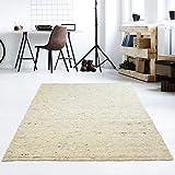 Taracarpet Moderner Handweb Teppich Alpina handgewebt aus Schurwolle für Wohnzimmer, Esszimmer, Schlafzimmer und die Küche geeignet (Muster, 60 Beige meliert)