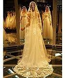 FUNAN Veli da sposa 1 strato Velo lungo (con. 7092c03e8302