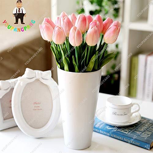 Pinkdose profumo piante rosa tulip di alta qualità fiore bonsai semi, più belli e colorati tulip piante perenni giardino della casa 20pcs: misto