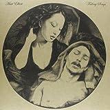 Failing Songs [Vinyl LP]