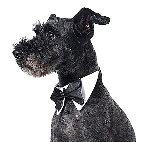Huishang Hunde Basic Collar Formale Haustier Welpen Hundekatze Bow Tie