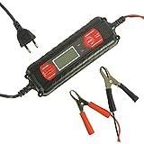 Absaar AB104-200 Chargeur Intelligent ATEK 4000 avec Ecran LCD, 4 A/6 -12 V