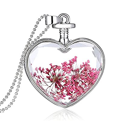 Queen Anne's Lace Forget Me Not Real Dry Flower Heart Glass Bottle Pendant Necklace Gift