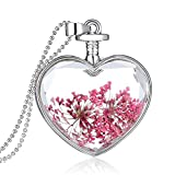 - 511HpXziTsL - Queen Anne's Lace Forget Me Not Real Dry Flower Heart Glass Bottle Pendant Necklace Gift
