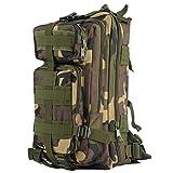 OUTAD Sac à Dos Tactique Militaire 24L 3P US Assault Pack Imperméable MOLLE (600D Nylon) (Camouflage du Jungle)