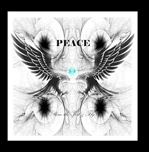 Pierce the Veil and Fly
