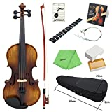 Best violini - ammoon Violino Acustico AV-508 4/4 Full Size Kit Review