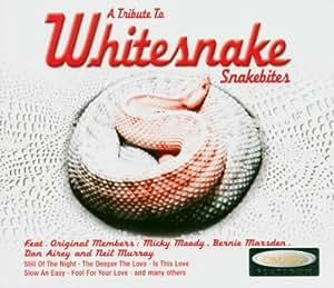 A Tribute to Whitesnake