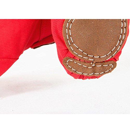 Wgwioo Modern Dance Shoes Fase Di Balletto Lace-Up Boot Morbida Sole Per Gli Uomini Donne Piccolo Bambino Lace-Up Shoes Ragazze Canvas Jazz Dance Boots Elastici Red