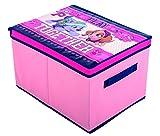 Paw Patrol Skye Aufbewahrungsbox mit Deckel & Griff 40x 30x 25?Pink Kinder Spielzeug Aufbewahrungsbox