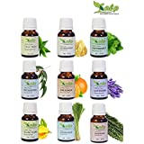Kalp Pack Of 9 Essential Oil In One Pack - Natural, Undiluted & Therpeutic Grade/Tea Tree, Frankincense, Peppermint, Eucalyptus, Orange, Lavender, Ylang Ylang, Lemongrass, Rosemary,15 ML Each