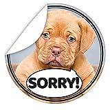 Sorry Aufkleber | Geschenkideen Sorry Freund | inkl. Postkarte Alles Gute | rund | 9,5 cm | Gestalten Sie Ihre Geschenke individuell