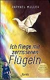 Image de Ich fliege mit zerrissenen Flügeln