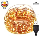 LTETTES USB Powered Copper 3 Wires Ultra Durable LED String Lights Waterproof IP65 Warm White, for Bedroom,Living Room, Christmas, Party Decoration Fairy Lights (10 Meters 100 LED)